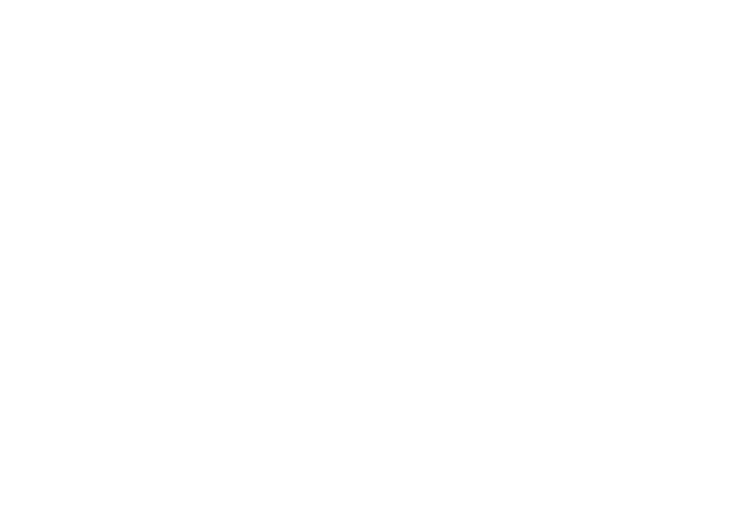 CarlGustav Solutions AB